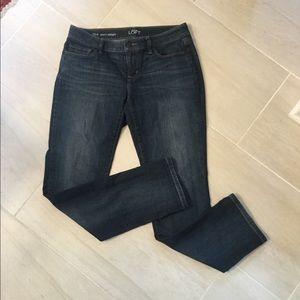 Loft Curvy\Straight jeans